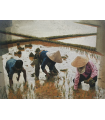FAMILY IN RICE PADDY